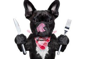 Чем кормить щенка французского бульдога