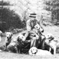 История происхождения лабрадоров