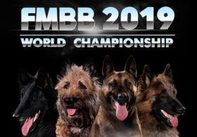 Фото записи Чемпионат мира FMBB