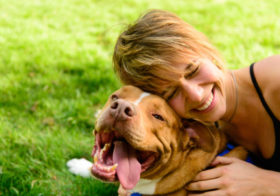 Фото записи Любовь к собакам передаётся по наследству