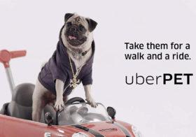 Фото записи Uber для любителей животных