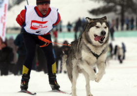 Фото записи Пора на лыжню